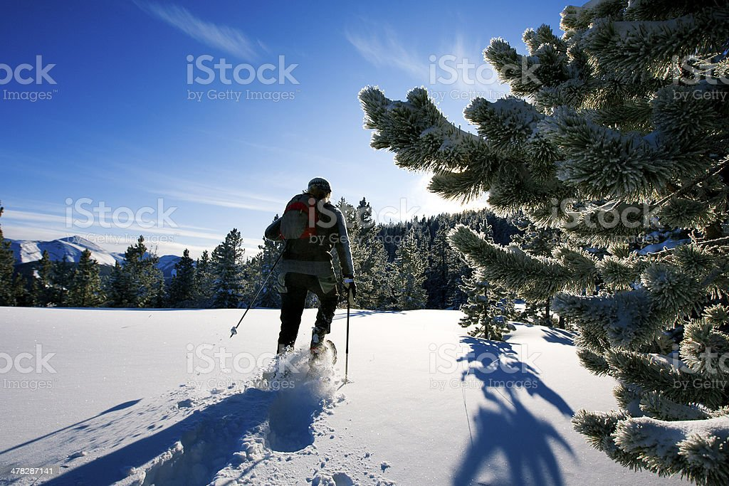 Snowshoe Adventure stock photo