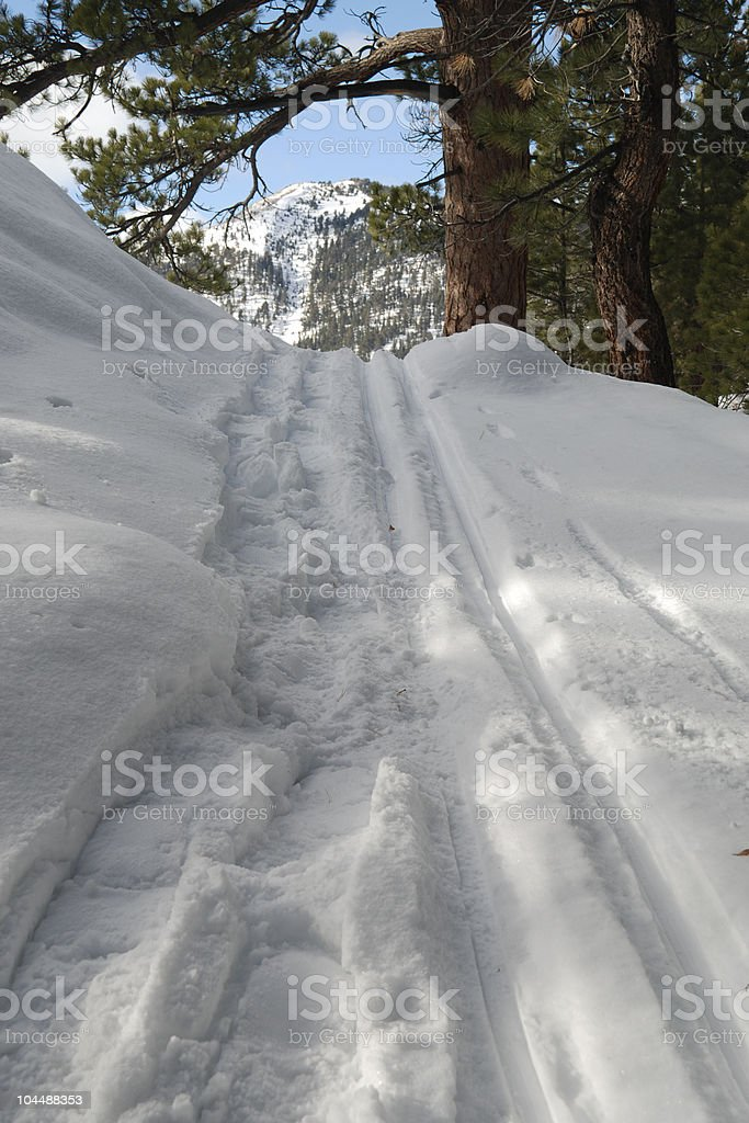 Snowshoe and Ski Tracks royalty-free stock photo