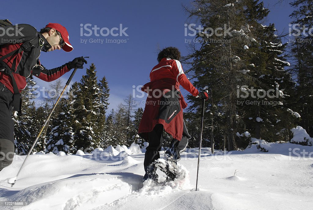 Snowshoe royalty-free stock photo