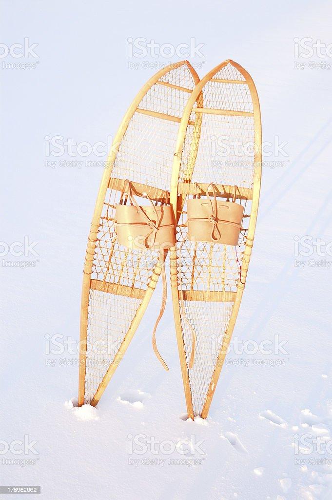 snowshoe royalty-free stock photo