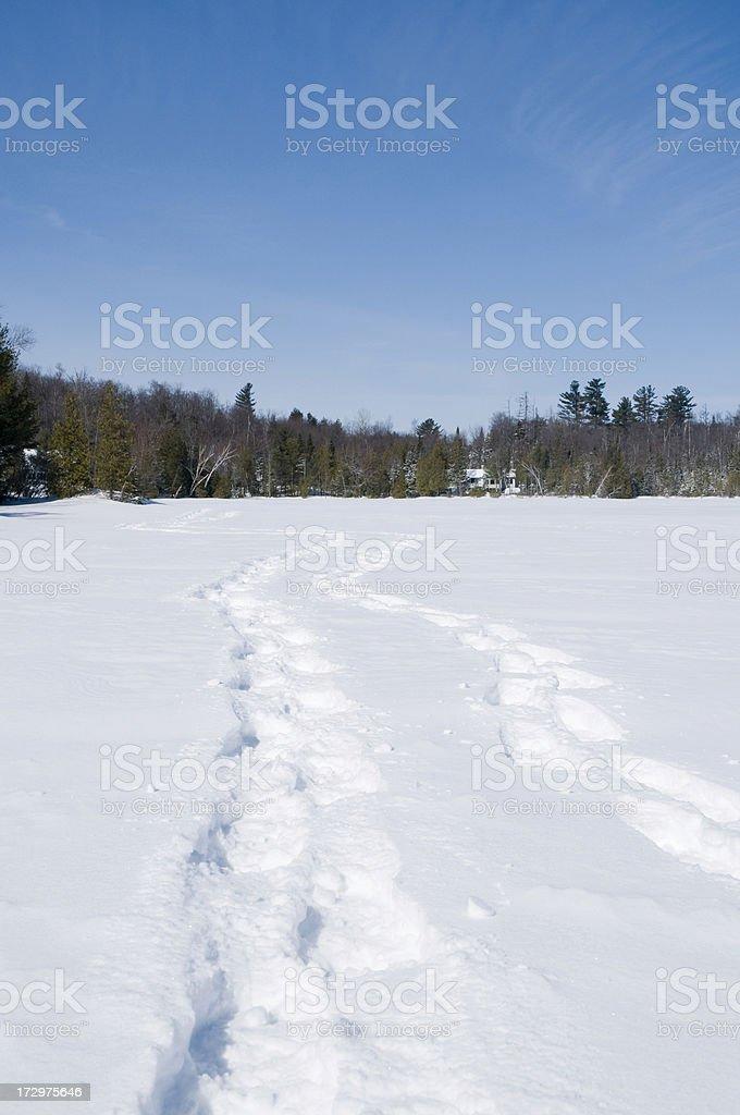Snowshoe tracks on lake royalty-free stock photo