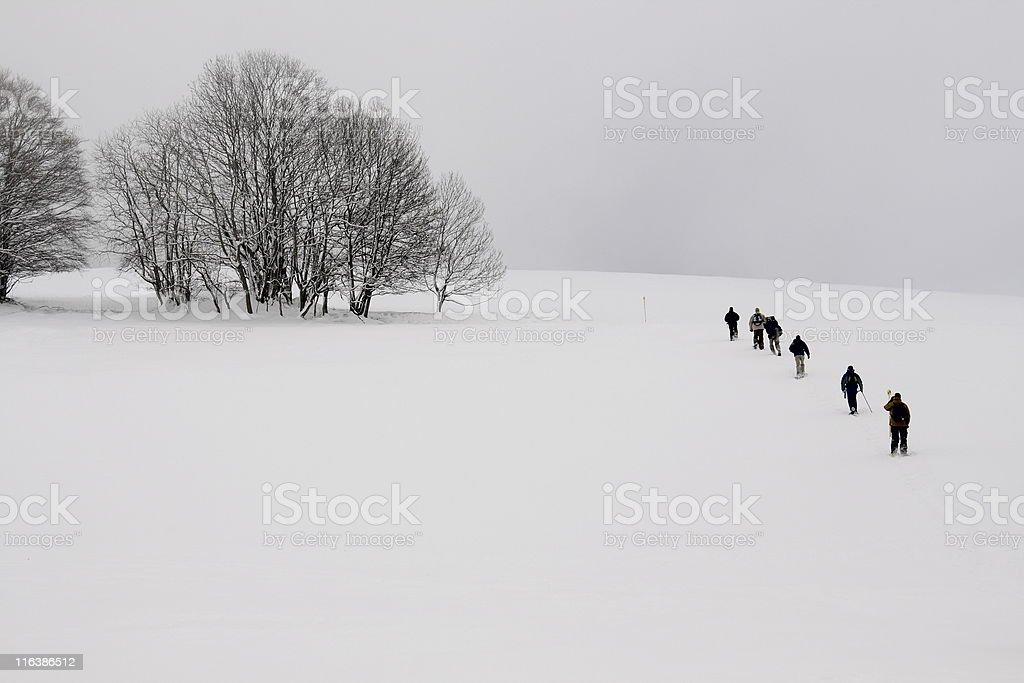 snowshoe trekking royalty-free stock photo