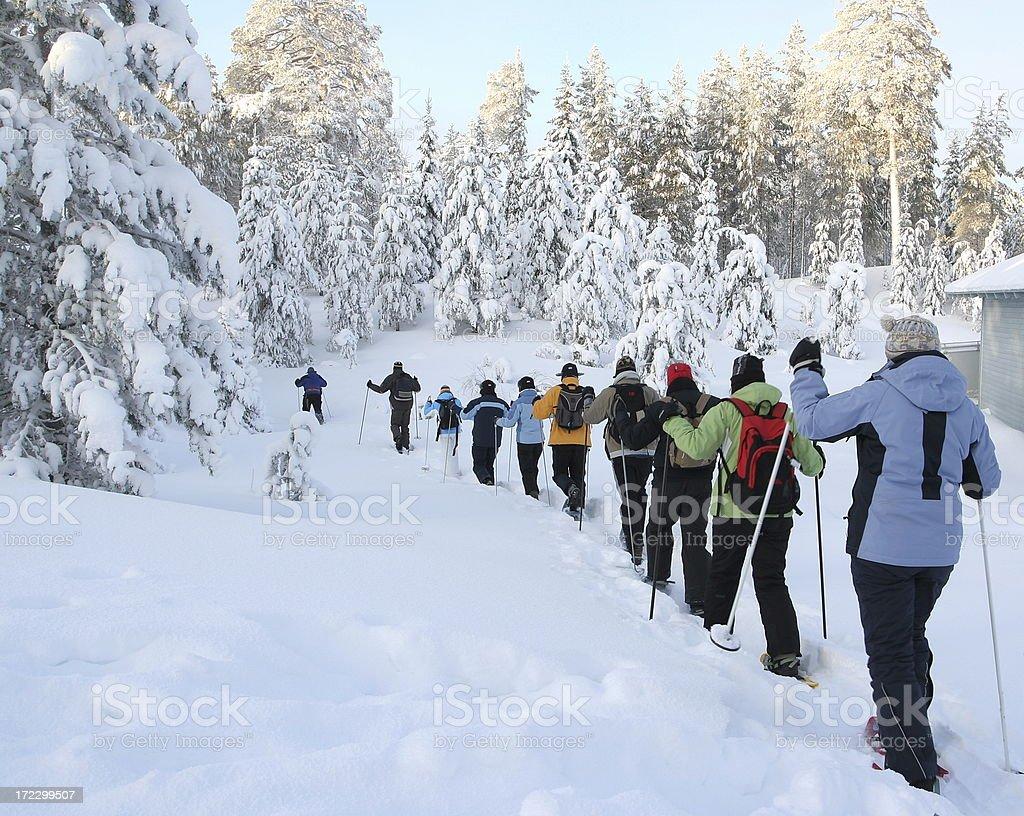 Snowshoe walking royalty-free stock photo