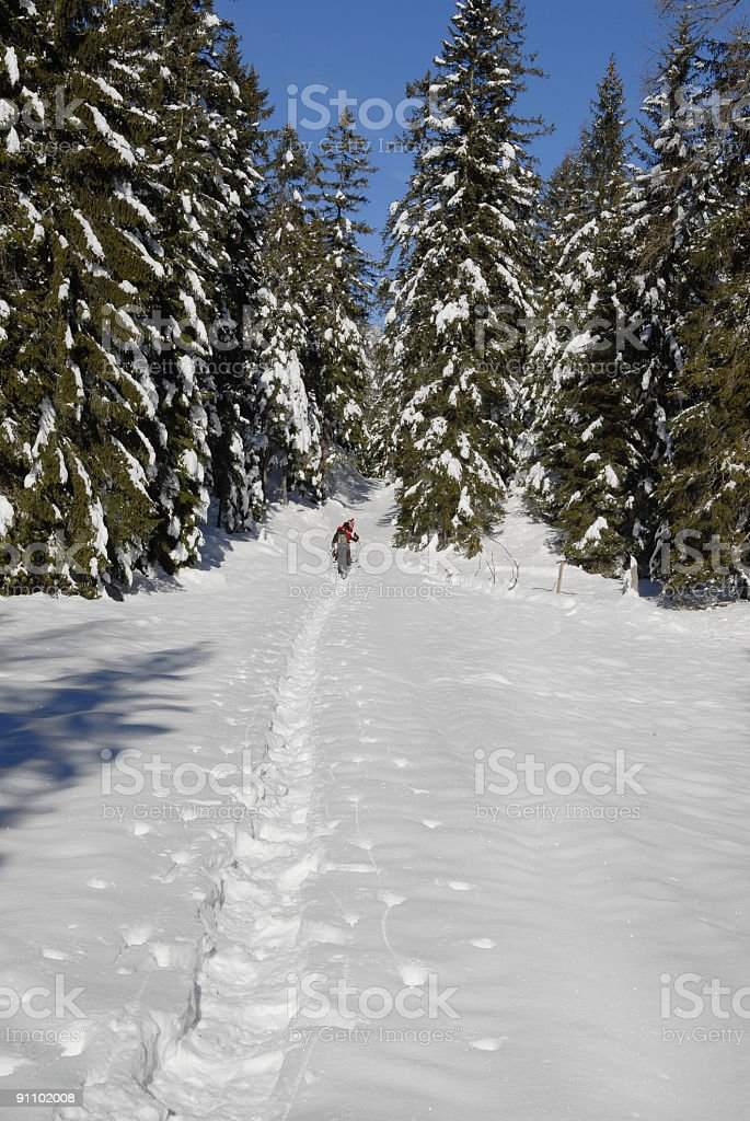 Snowshoe walking stock photo