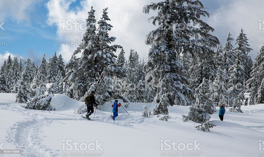 Snowshoeing in Crater Lake NP stock photo