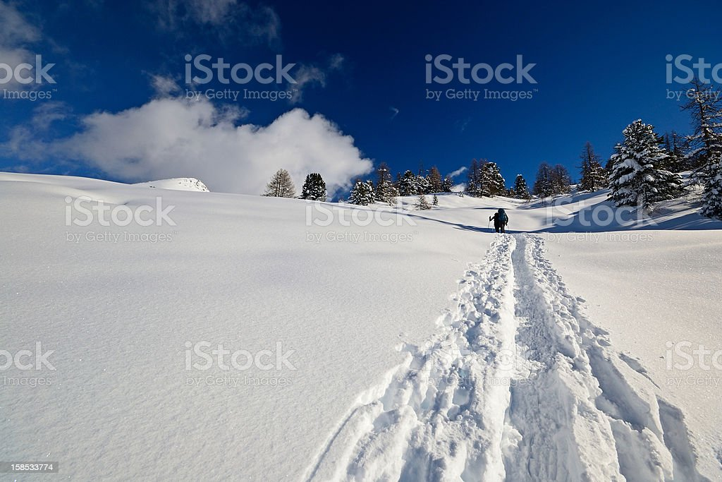 Snowshoeing in powder snow royalty-free stock photo