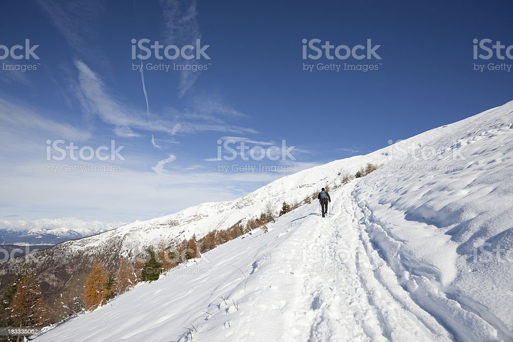 Snowshoeing in the Alps, Trentino Alto Adige, Italy royalty-free stock photo
