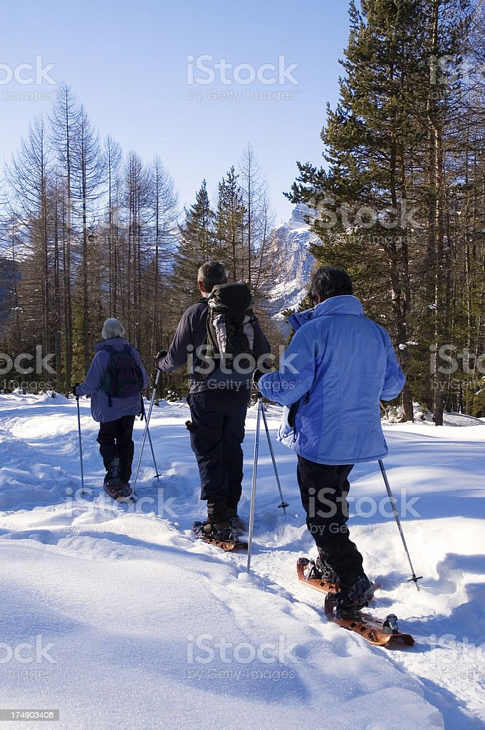 Snowshoeing in the Dolomites, Italy royalty-free stock photo