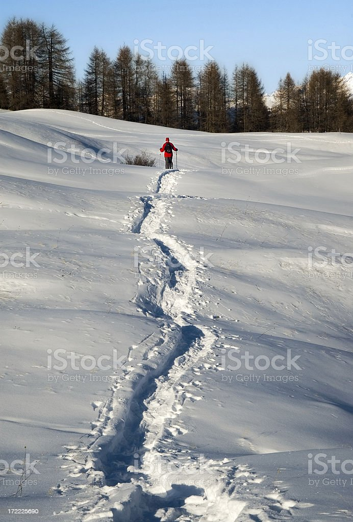 Snowshoeing in the powder royalty-free stock photo