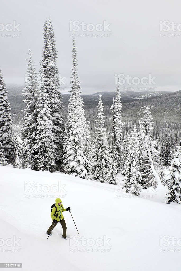 snowshoeing montana royalty-free stock photo