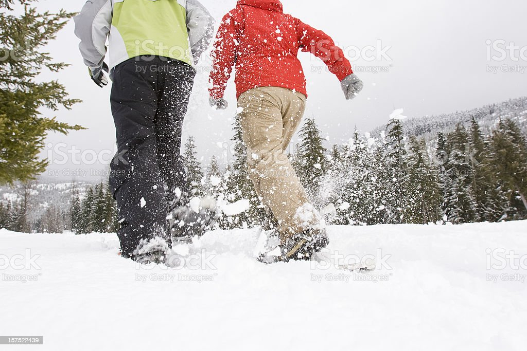 snowshoeing. stock photo