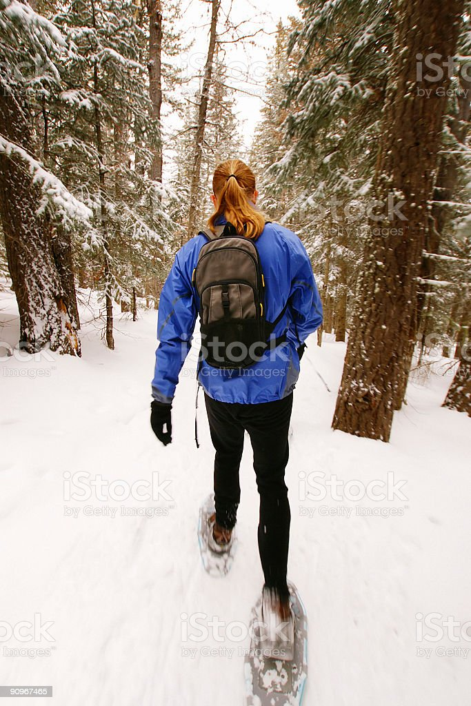 woman snowshoeing in the snow forest stock photo