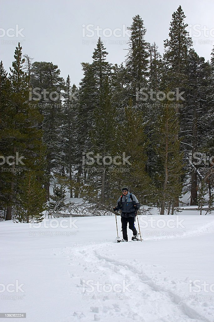 Snowshoeing through the valley stock photo