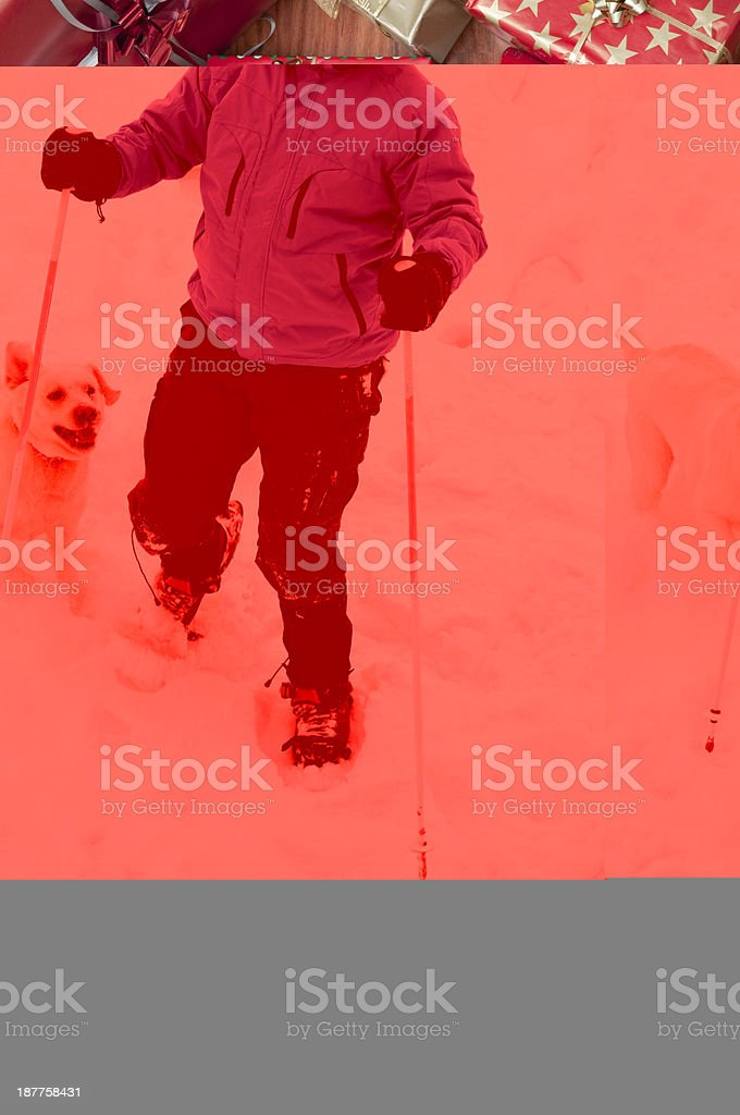 Snowshoeing with dog royalty-free stock photo