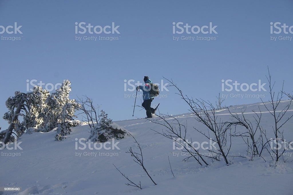 Snowshoer royalty-free stock photo
