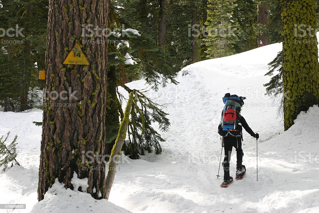 Snowshoer with Trailmarker royalty-free stock photo