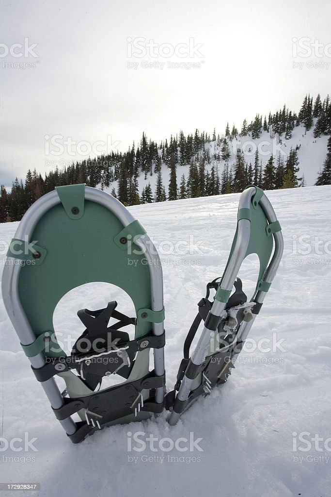 Snowshoes in their element. Mt Hood, Oregon royalty-free stock photo