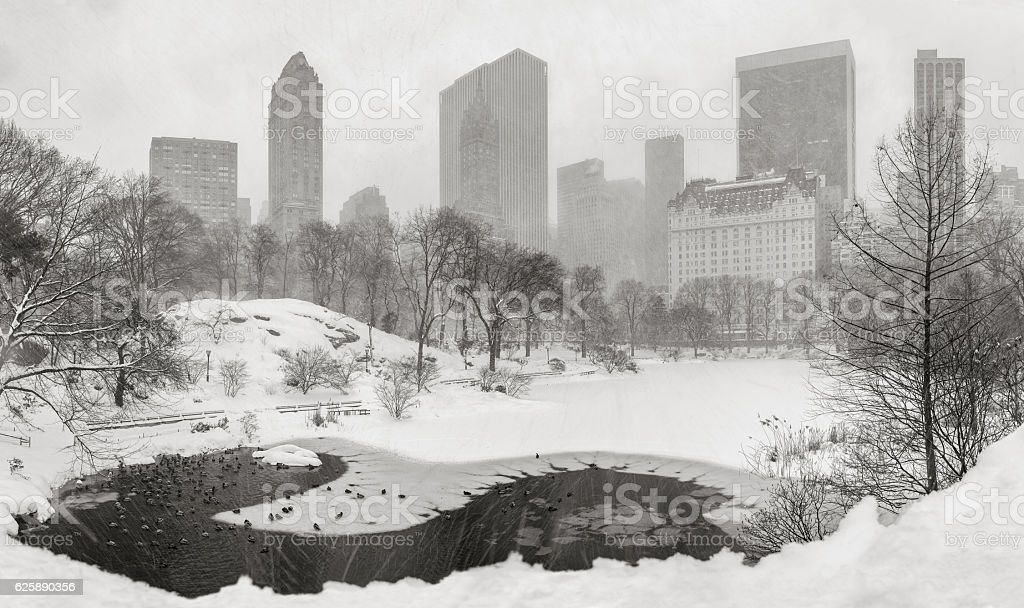 Snowstorm in Central Park with Midtown skyscrapers. New York City stock photo