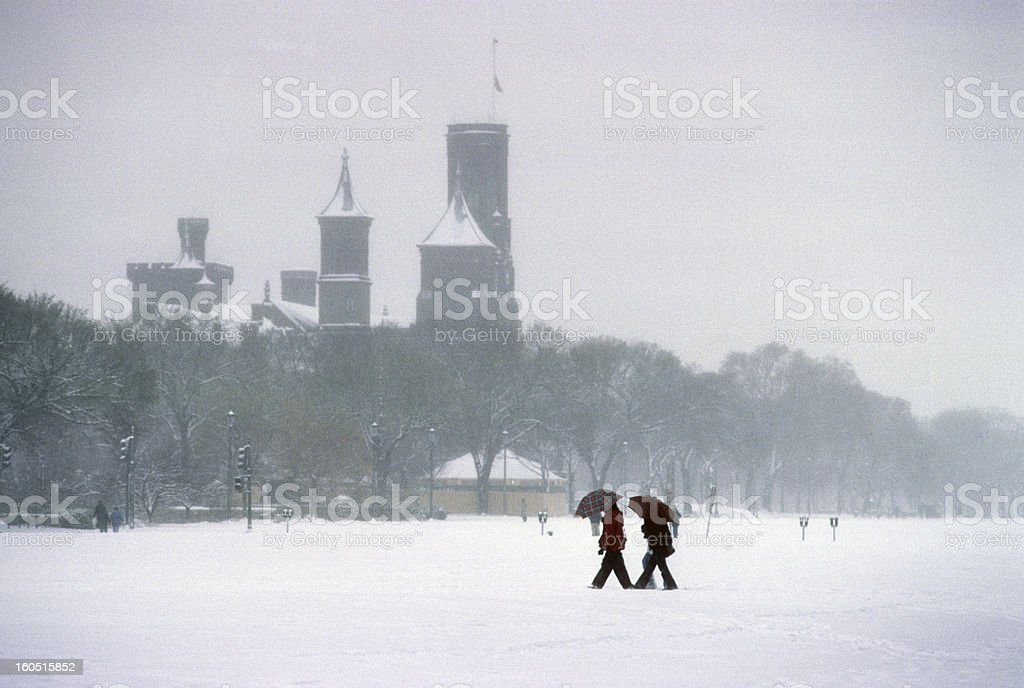 Snowstorm on the Mall. stock photo