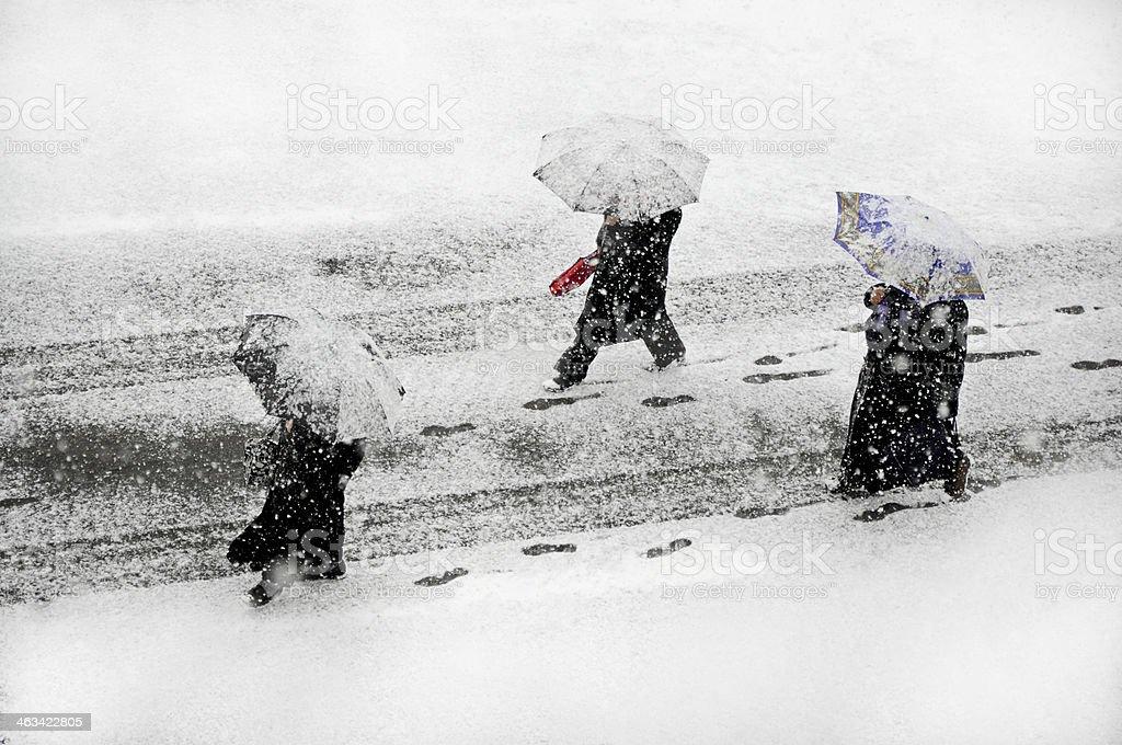 Snowstrom stock photo