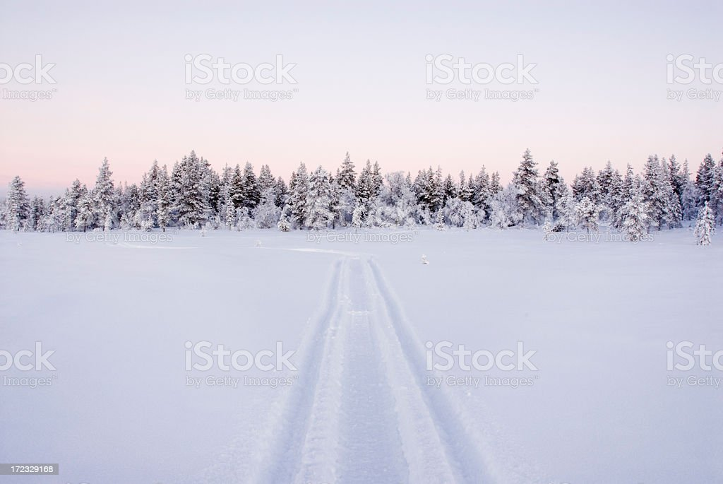 Snow-topped forest with snowmobile track trail on snow stock photo