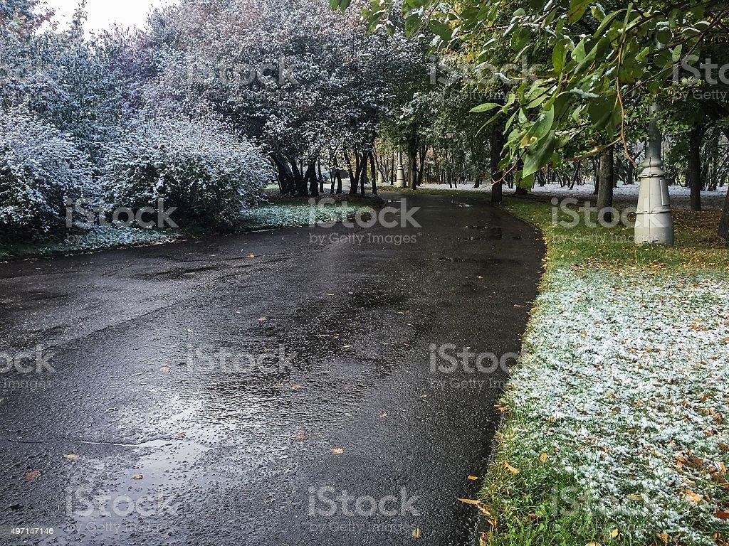Automne route de neige dans un parc, à Moscou photo libre de droits