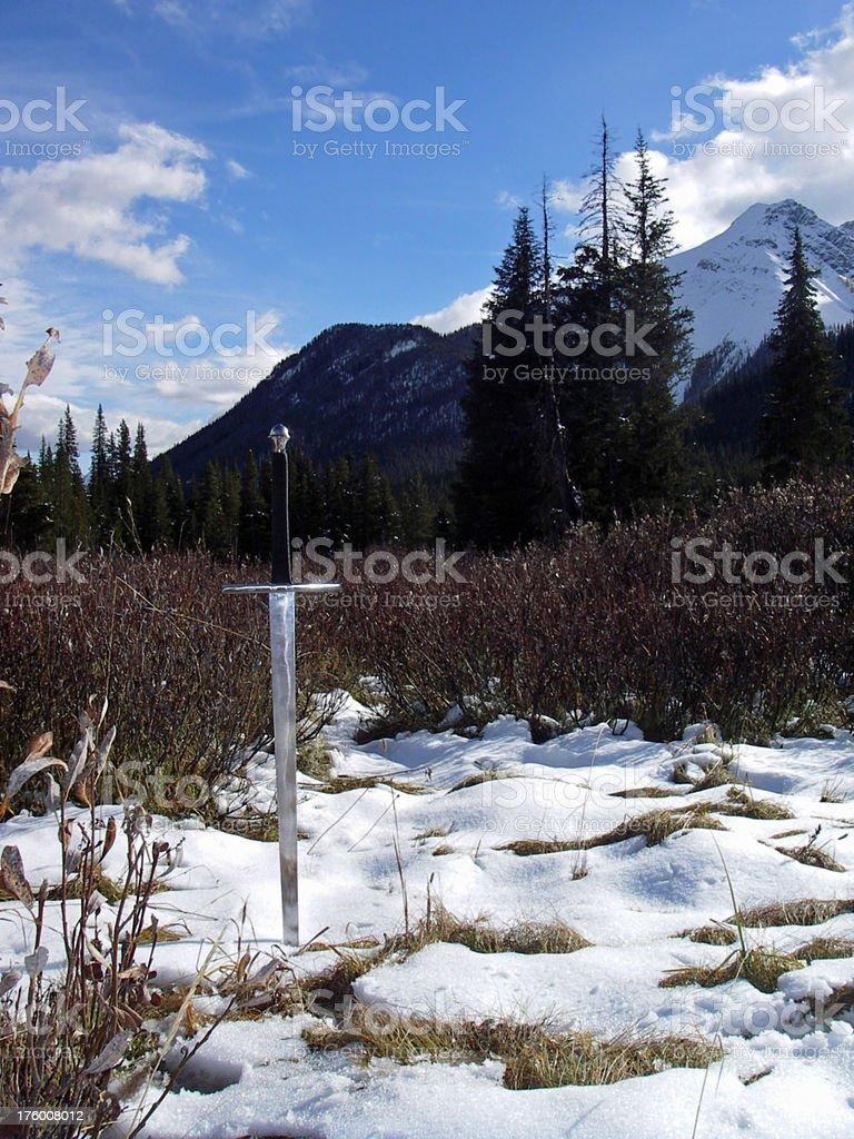 Snowy Battlefield stock photo