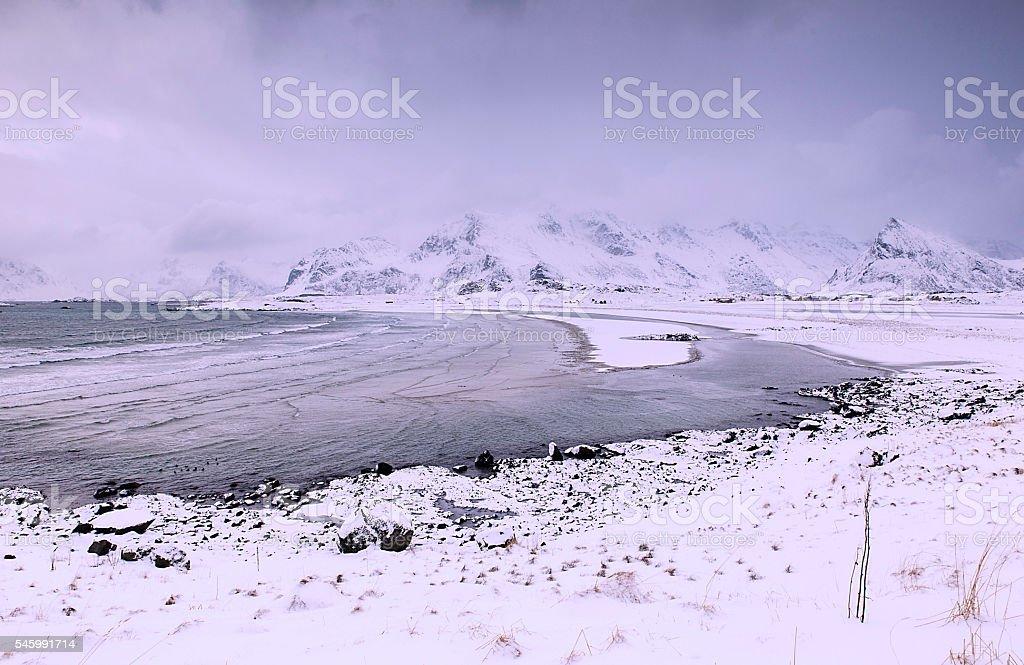 snowy beach-lofoten stock photo