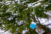 Snowy blue Christmas present fir-tree