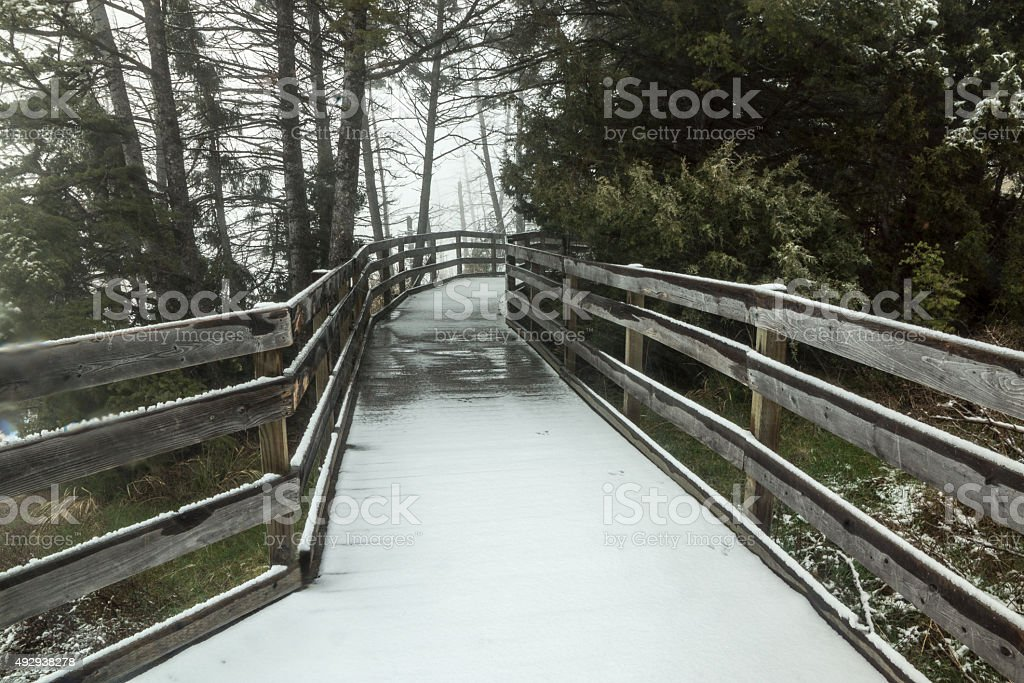 Snowy Boardwalk stock photo