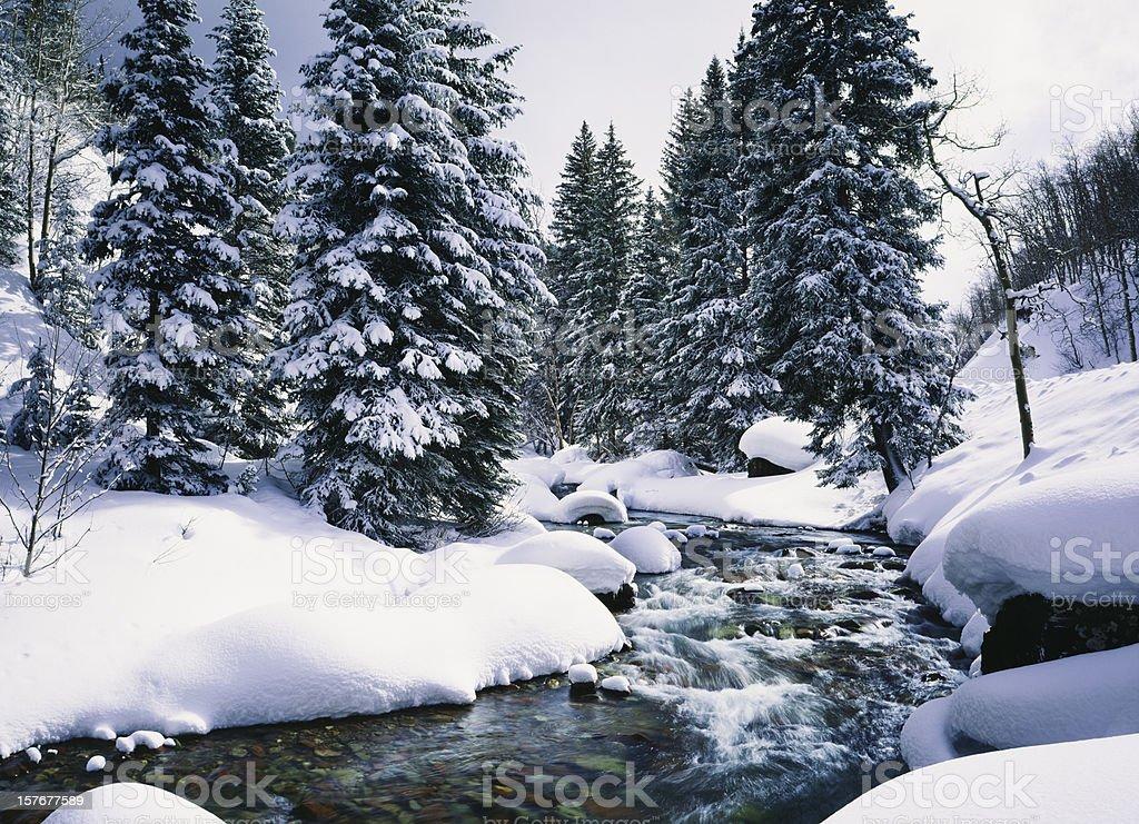 Snowy Cascade Creek In Lake Tahoe, California royalty-free stock photo