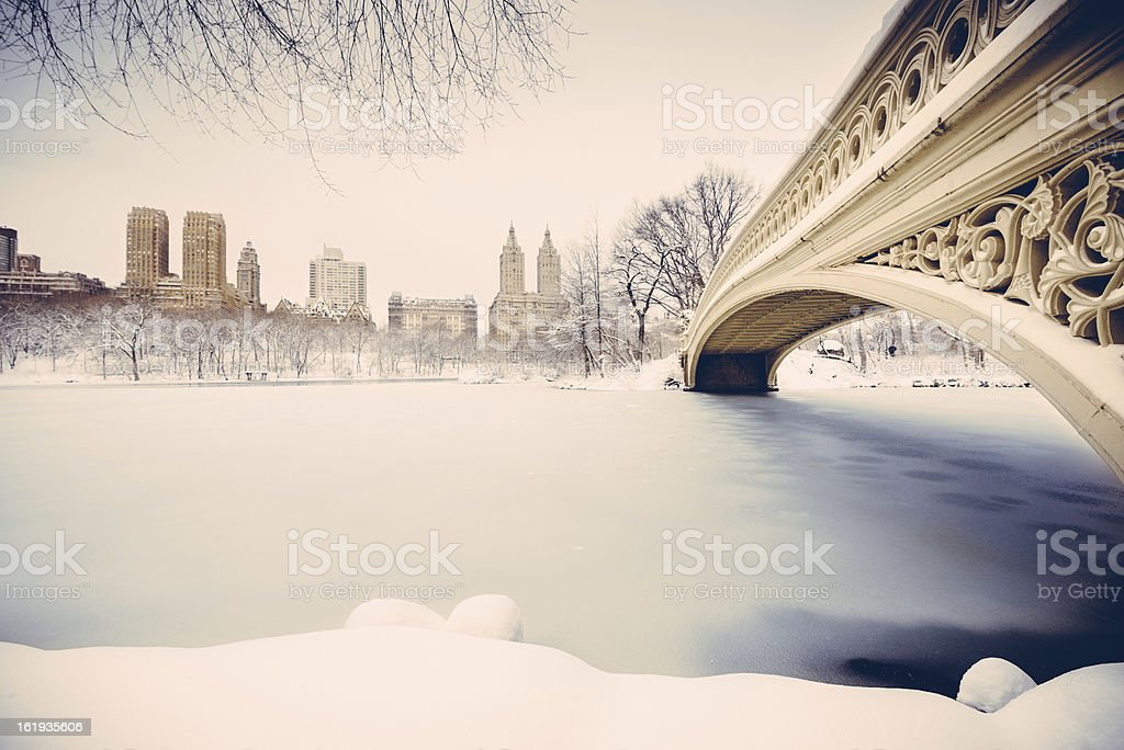 Snowy Central Park New York stock photo
