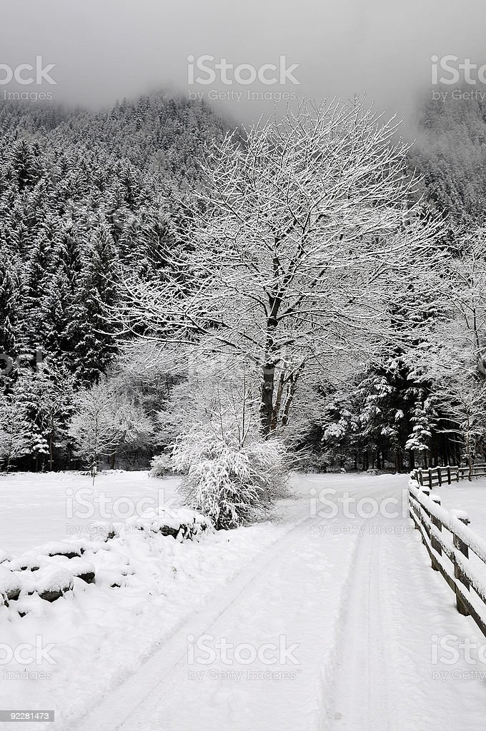 Snowy country side royalty-free stock photo