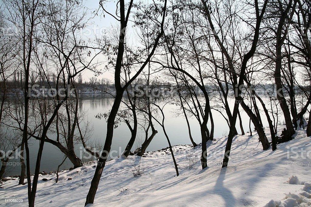 Snowy Danube royalty-free stock photo