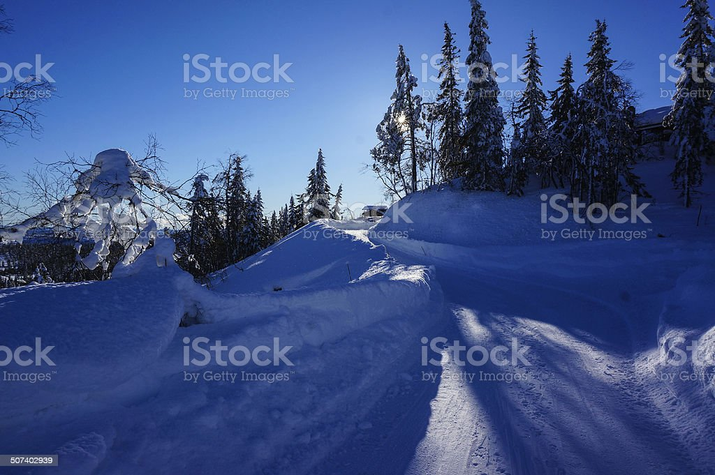 Snowy day in Norwegian mountains royalty-free stock photo