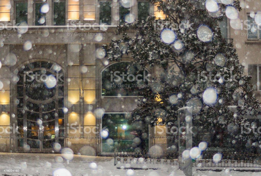 Snowy Day stock photo