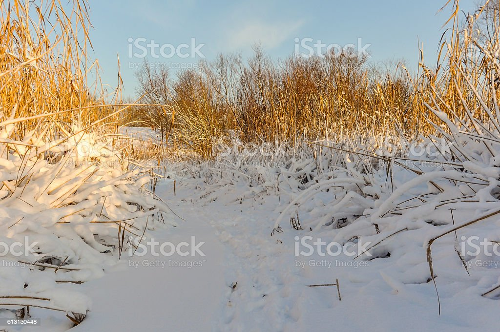 Snowy ditch on a sunny winterday stock photo