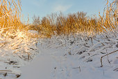 Snowy ditch on a sunny winterday