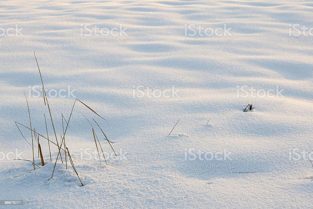 Snowy dunes royalty-free stock photo