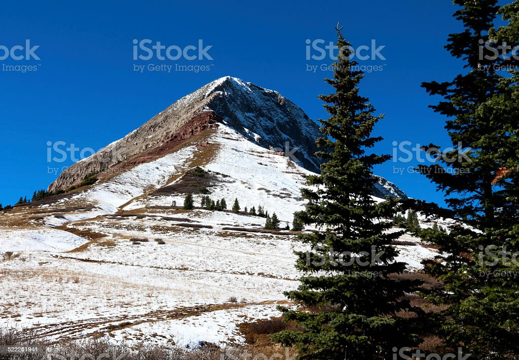 Snowy Engineer Peak in Colorado with two tall pine trees stock photo