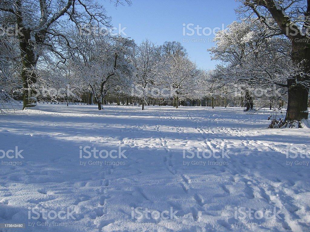 Snowy England royalty-free stock photo