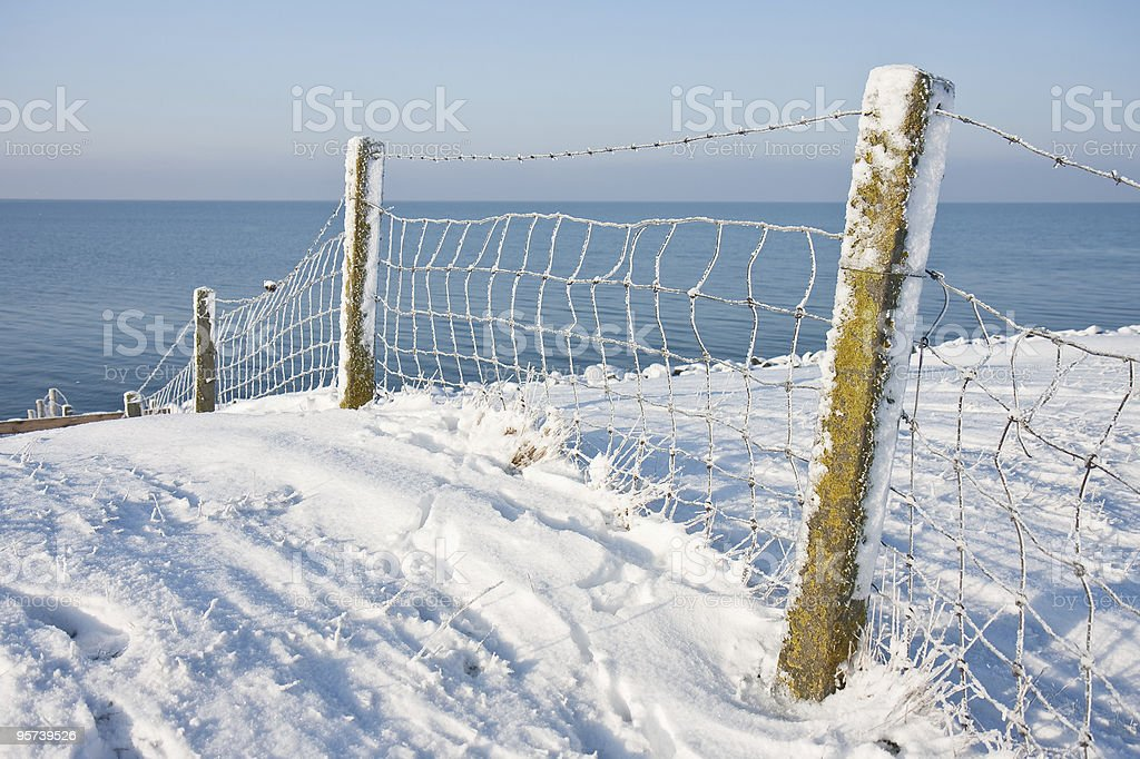 Snowy fence near coast of the Netherlands royalty-free stock photo