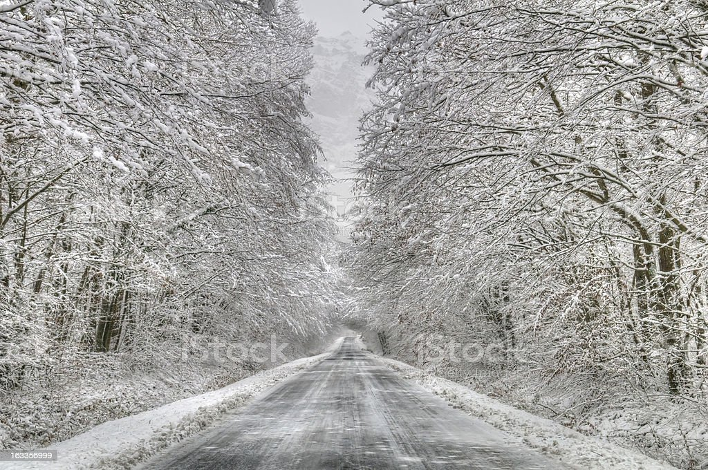 snowy forest raod royalty-free stock photo