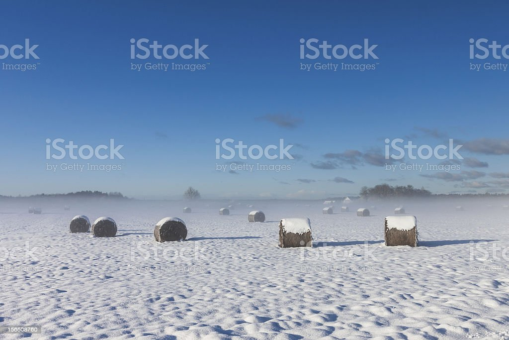 snowy hay bales with fog royalty-free stock photo