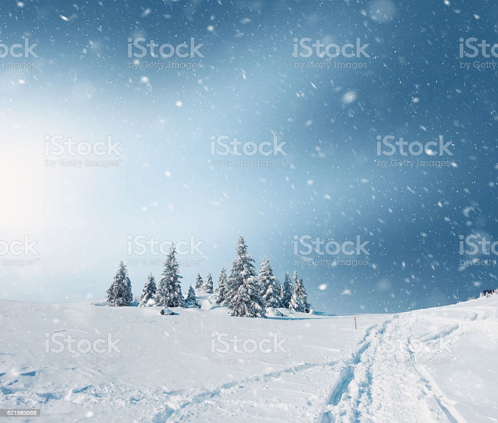 Snowy Landscape stock photo