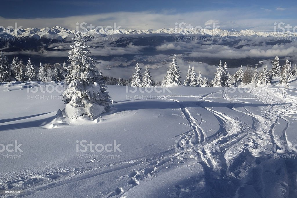 Snowy landscape: trees and mountains covered by snow in Trentino royalty-free stock photo