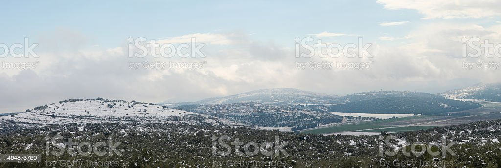 Snowy landscape with olive trees stock photo