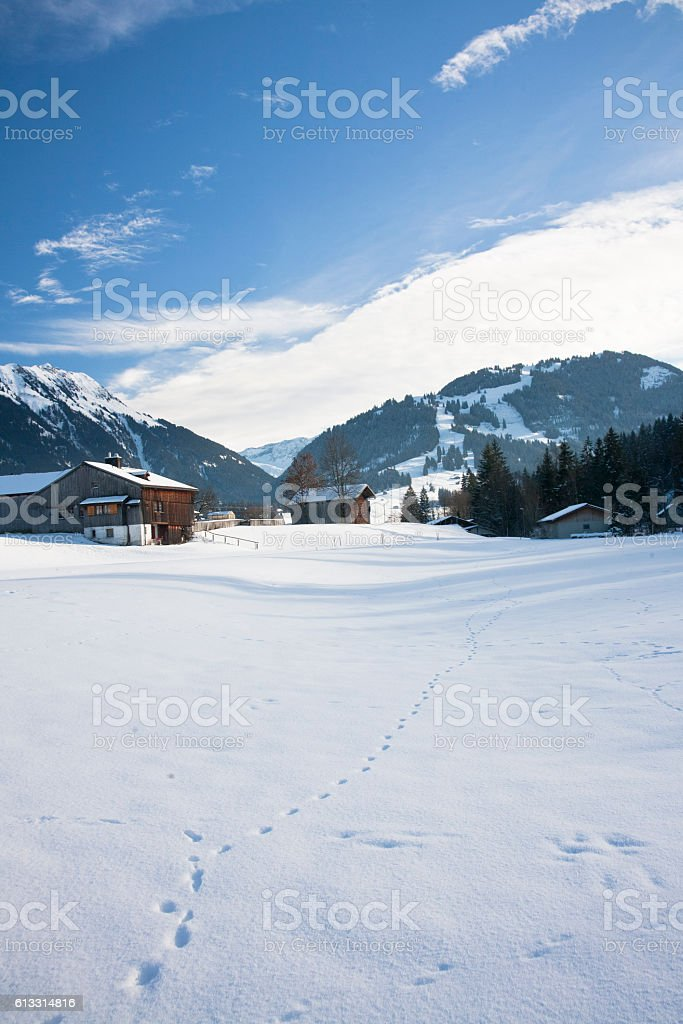 Snowy landscape with traditional swiss houses in Alps stock photo