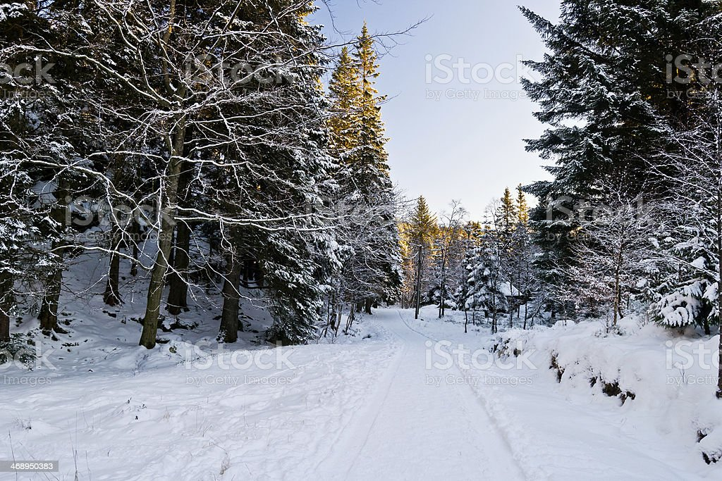 Snowy landscapes II royalty-free stock photo