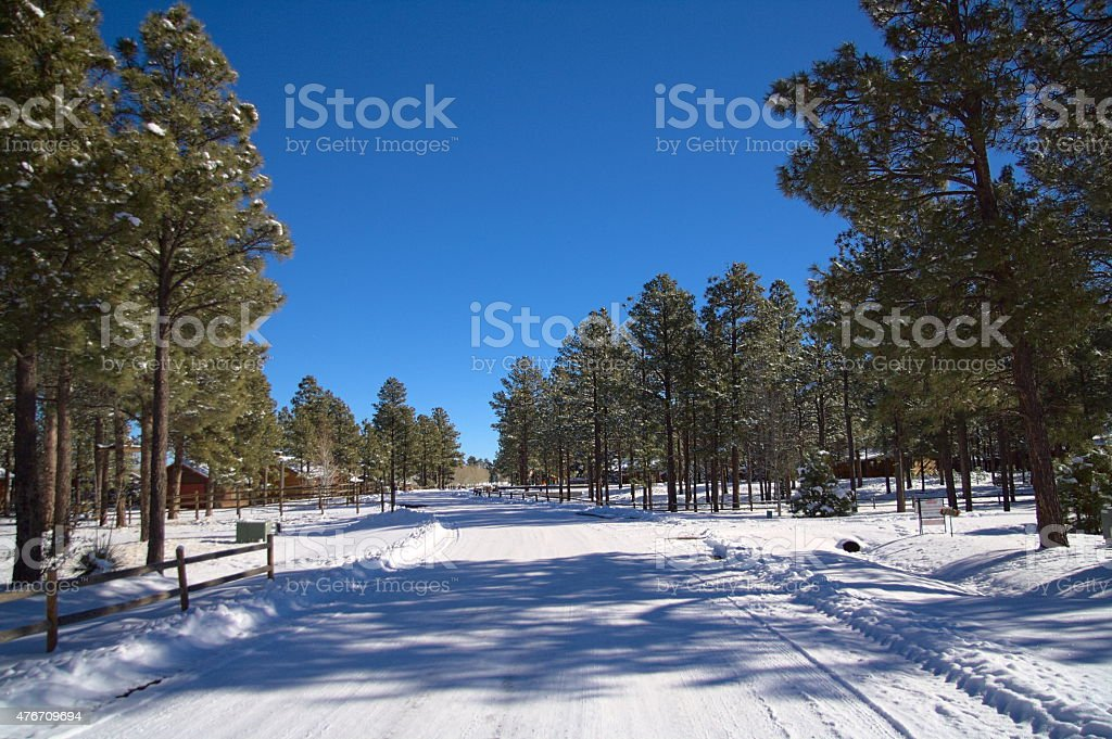 Snowy Lane stock photo